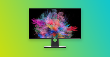 How do I get rid of bugs on my monitor